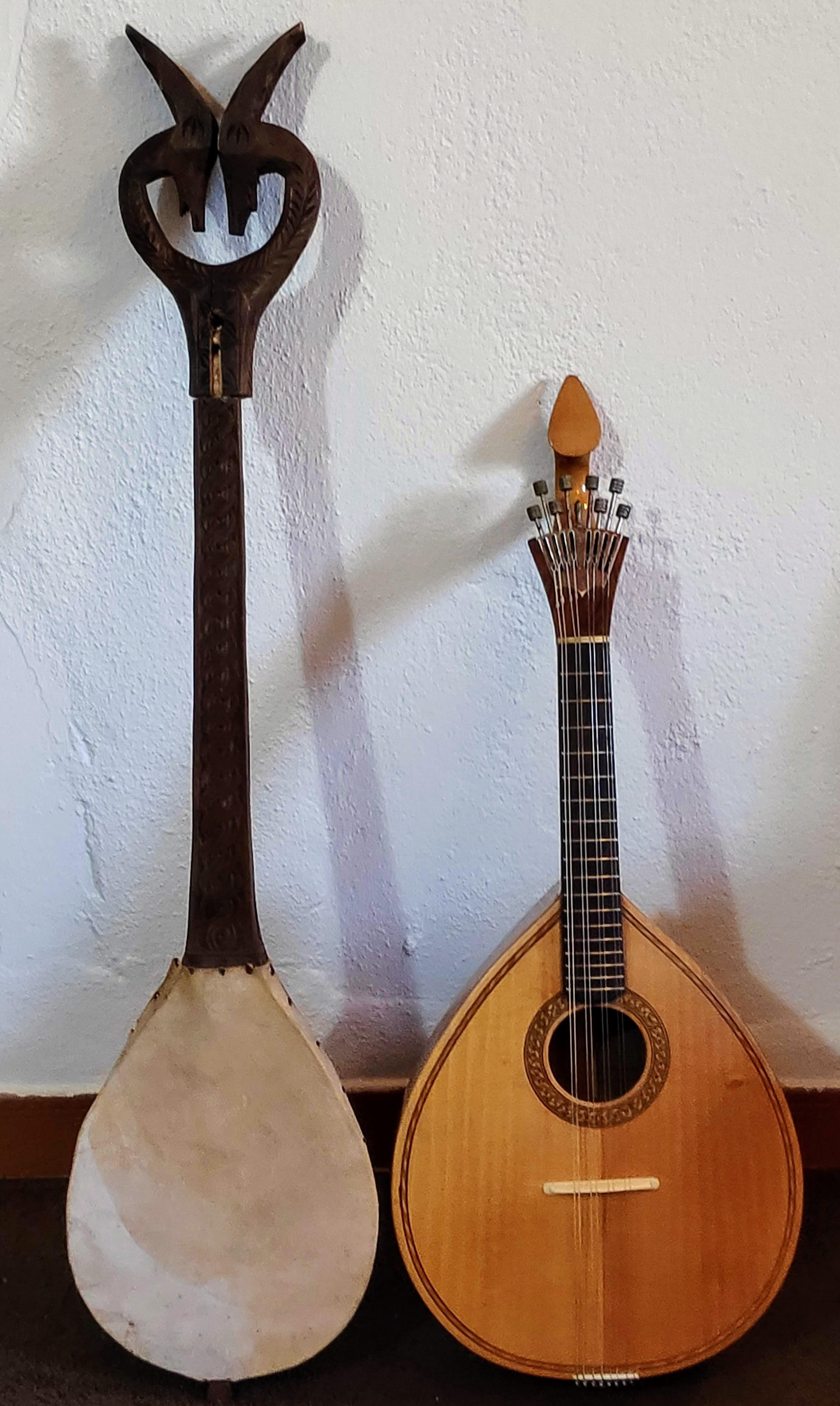 Instrument X+ mandolin.jpg