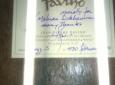 Favino-guitar-owner-Mehran-Sokhanvar-1130
