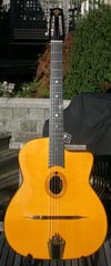 Peter Zwinakis Guitars