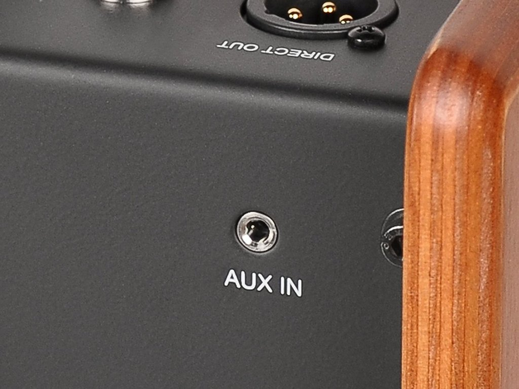 Acus One for Street Acoustic Guitar Amplifier (wood)