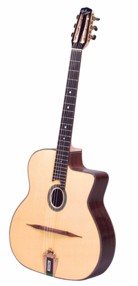 DELL'ARTE DG-RN1 ROBIN NOLAN (FAVINO STYLE) GUITAR ***THIS MODEL HAS BEEN DISCONTINUED***