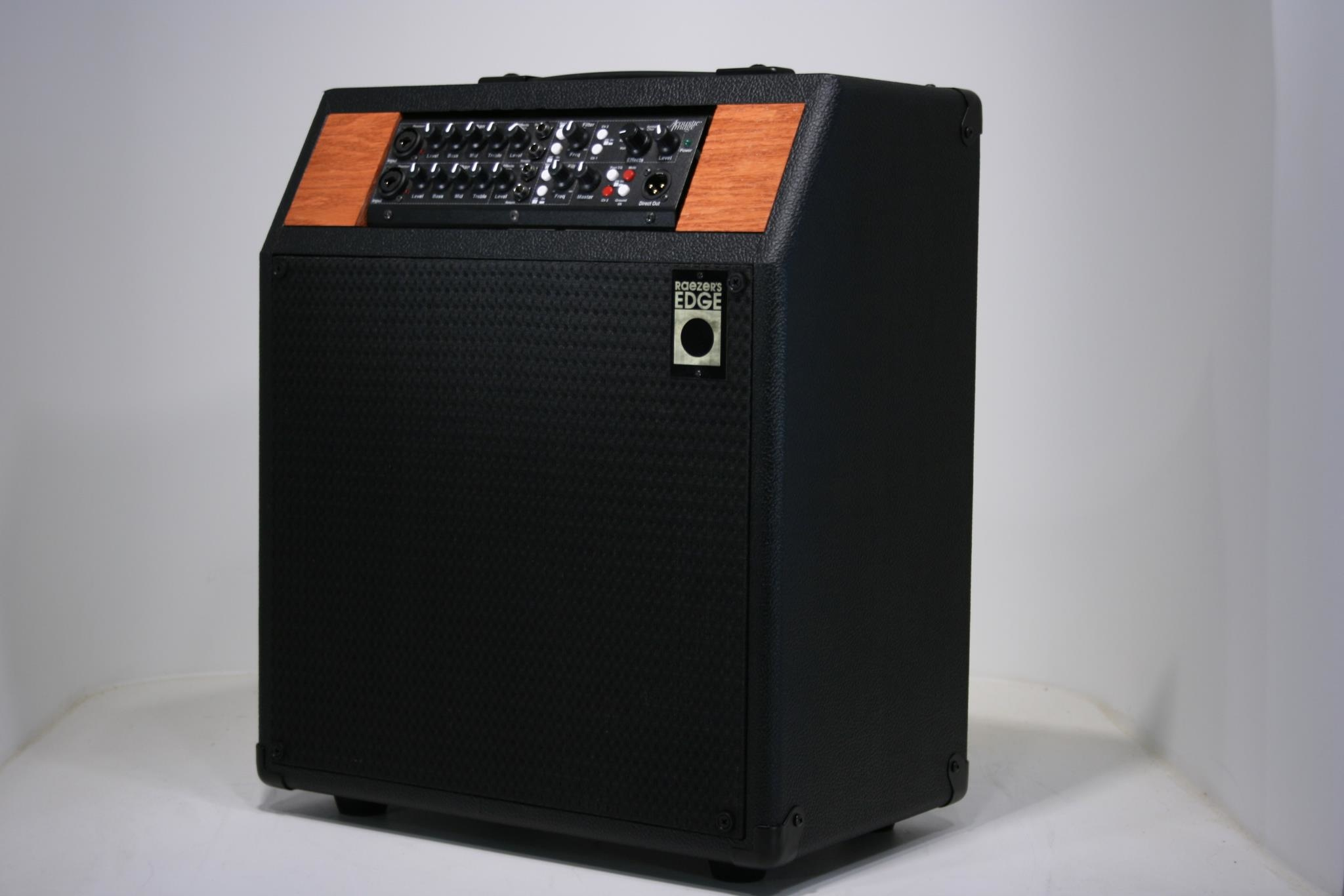 Raezer's Edge Stealth 10-ER Combo Speaker Cabinet (Includes Cover)