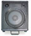 Redstone Audio RS-10ER Speaker