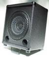 Redstone Audio RS-10V Speaker