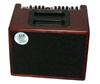AER Compact 60 OMH Acoustic Amplifier Mahogany