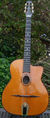2007 AJL Model 503 ''Mich Mich'' (Brazilian Rosewood back and sides and Schatten pickup