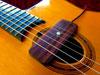 Krivo Nuevo Classic Single Coil Gypsy Jazz Guitar Pickup