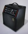 Raezer's Edge One 6 ComboSpeaker Cabinet (Includes Cover)