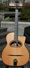 2005 Shelley Park Elan 12 Fret D Hole Guitar (Serial #156 ) with HSC