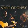 Yoshifumi Yamamoto SPIRIT OF GYPSY Gypsy Swing
